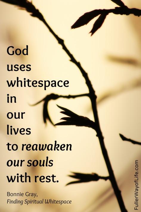 Reawaken Our Souls