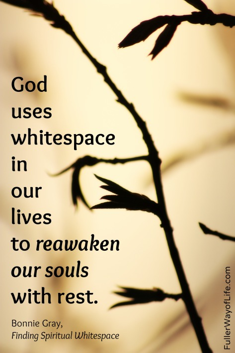 Reawaken Our Souls