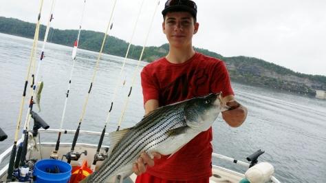 Noah's Big Fish