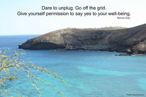 Dare to Unplug