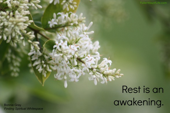 Rest is an Awakening
