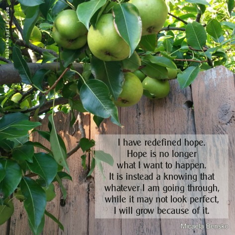 hope-redefined